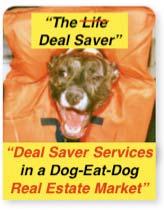 DealSaver2